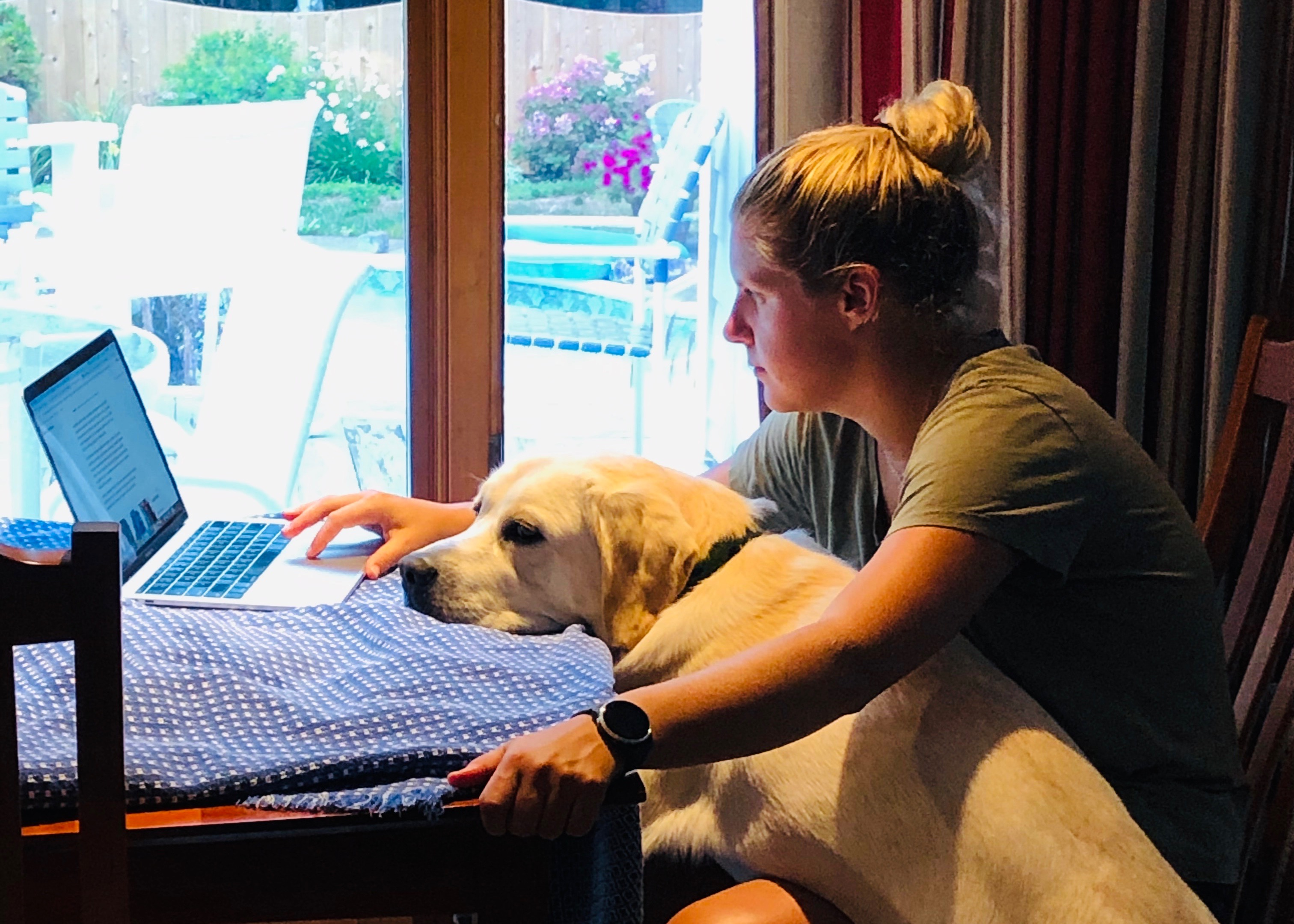 Working from home with a dog